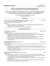 Write Resume Template Extraordinary Example Of Resum Resume Sample Simple Basic Resume Template For