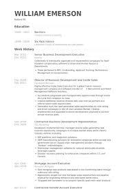 Senior Business Development Executive Resume samples
