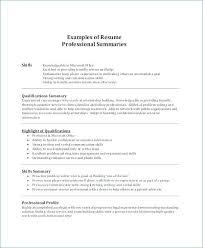 Resume Summary Of Qualifications Examples Tomburmoorddinerco Delectable Resume Summaries