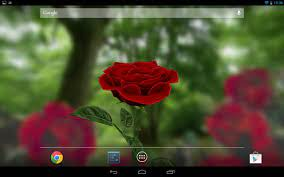 3D Rose Live Wallpaper Lite for Android ...