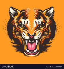 colorful tiger face royalty free vector