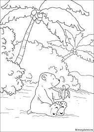 Lars De Kleine Ijsbeer Op Avontuur Kleurplaat 116131 Kleurplaat