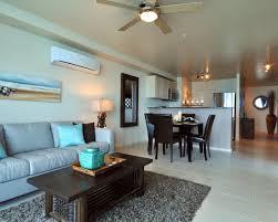 Elegant Condo Living Room Decorating Ideas Photo Gallery