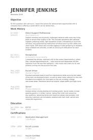 Professional Resumes Beauteous Direct Support Professional Resume Samples VisualCV Resume Samples