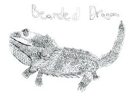 Bearded Dragon Coloring Page Bearded Dragon Coloring Pages Bearded