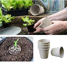 Biodegradable Paper With Flower Seeds Morbeauty 30 Pieces Biodegradable Plant Flower Paper Pulp Seeding Pots Eco Friendly Planting Square Biodegradable Seed Starter Cowpots
