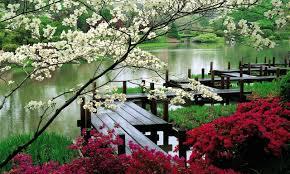 Japanese Garden Japanese Garden Wallpaper 8269 Wallpapers13com