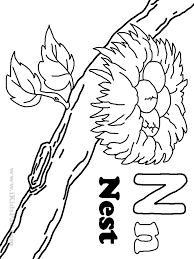 9 Pics Of Coloring Pages Letter N Nest - Letter N Nest Coloring ...
