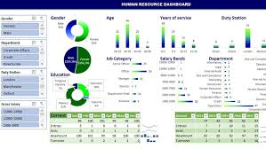 Udemy Dashboard Designing And Interactive Charts In Excel Building Dynamic Interactive Human Resource Dashboard Excel
