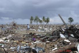 Asian tsunami effects in western australia university of western australia. Marking 15 Years Since The Indian Ocean Tsunami 2004 World Animal Protection