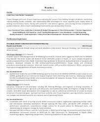 Resume Examples For Management Chief Financial Officer Resume Sample