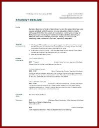 Resume Template For College Students With No Experience Skincense Co