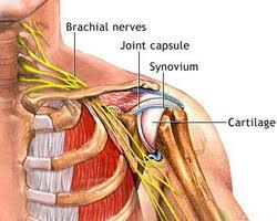 Image result for remedial massage frozen shoulder