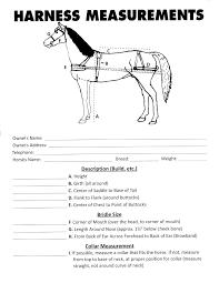 Horse Measurement Guide