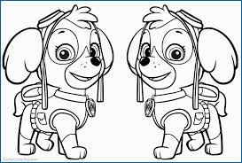 Skye Paw Patrol Coloring Pages Best Of Paw Patrol Coloring Pages