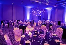 Lilly Lupus Foundation Annual Purple Ball