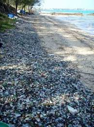 love the sound of tinkling glass as sea glass beach