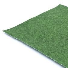 carpet grass. carpet grass i