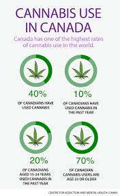 marijuana should be legalized and regulated camh ca infographic cannabis use in