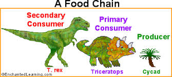 Dinosaur Time Periods Chart Dinosaurs And Plants Zoomdinosaurs Com