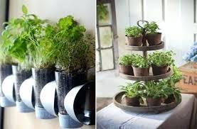 interior herb garden charming indoor herb garden design garden design with  inspiring ideas for a indoor . interior herb garden awesome indoor ...
