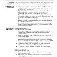 Insurance Manager Resume Senior Account Manager Resume Template Executive Insurance