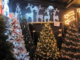 christmas showcase tralee indoor and outdoor trees lights and