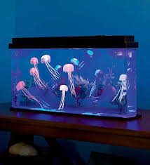 giant jellyfish aquarium with color changing led lights looks cool kids will get