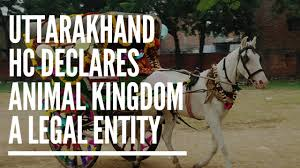 Image result for Uttarakhand High Court declares animals as 'Legal Persons'