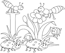 Small Picture Printable 40 Preschool Coloring Pages Spring 8130 Spring Bugs