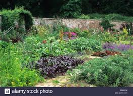 Walled Kitchen Gardens Hadspen House Somerset Walled Kitchen Garden With Vegetables And