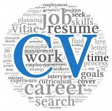 curriculum vitae cv for development ngo sector career in ngo s