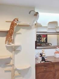 wall mounted cat furniture elegant amazing wall mounted cat furniture wall mounted cat tree made out