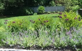 Small Picture Pollinator Garden In Summit Sparrow Brambles Landscape Design