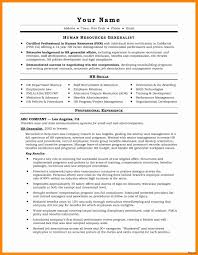 Performance Profile Resumes How To Write A Profile For A Resume Awesome Personal Profile Resume
