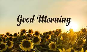good morning messages wishes es