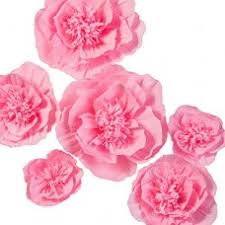 Hanging Paper Flower Backdrop Lings Moment Paper Flower Decorations 6 X Deep Pink Crepe Paper