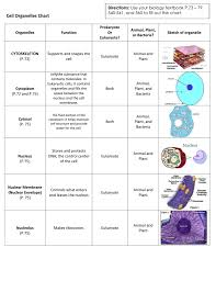 Cell Organelle Chart Cell Organelles