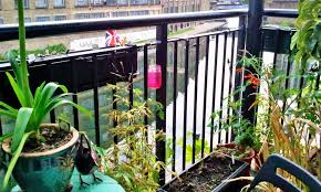 apartment patio privacy ideas. Apartment Patio Privacy Fence Landscaping Gardening Ideas Vinyl . Around Diy Ideas.