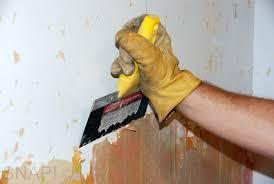 free remove wallpaper 800x536