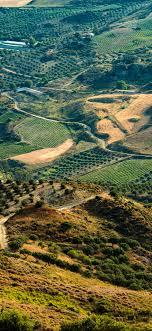 ni47-land-green-farm-nature-love-wallpaper