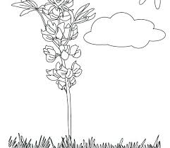 Brownie Girl Scout Coloring Pages Brownie Girl Scout Coloring Pages