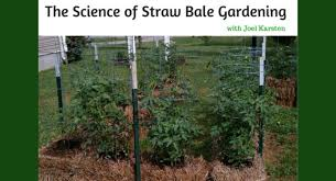 the science of straw bale gardening with joel karsten