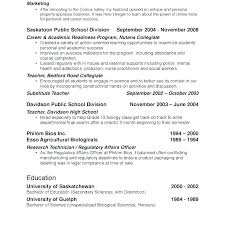 Resume Personal Interests Examples Sample Professional Resume Gorgeous Resume Interests