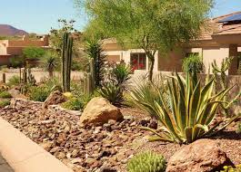 Small Picture Home landscaping garden decoration ideas desert gardens nursery