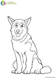 Kleurplaat Hond 64 Gratis Allerleukste Honden Kleurplaten Nieuwe