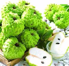 Polynesian Produce Stand  ATIS SUGAR APPLE Annona Squamosa RARE Annona Fruit Tree