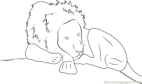 Small Picture Lion Sleeping Coloring Page Free Lion Coloring Pages