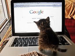 is google making us stupid essay is google making us stupid essay carr mfacourses web fc comis google making us stupid essay