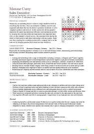 Retail Sales Executive Resume Sales Executive Resume Format Sales Executive Example Retail Sales